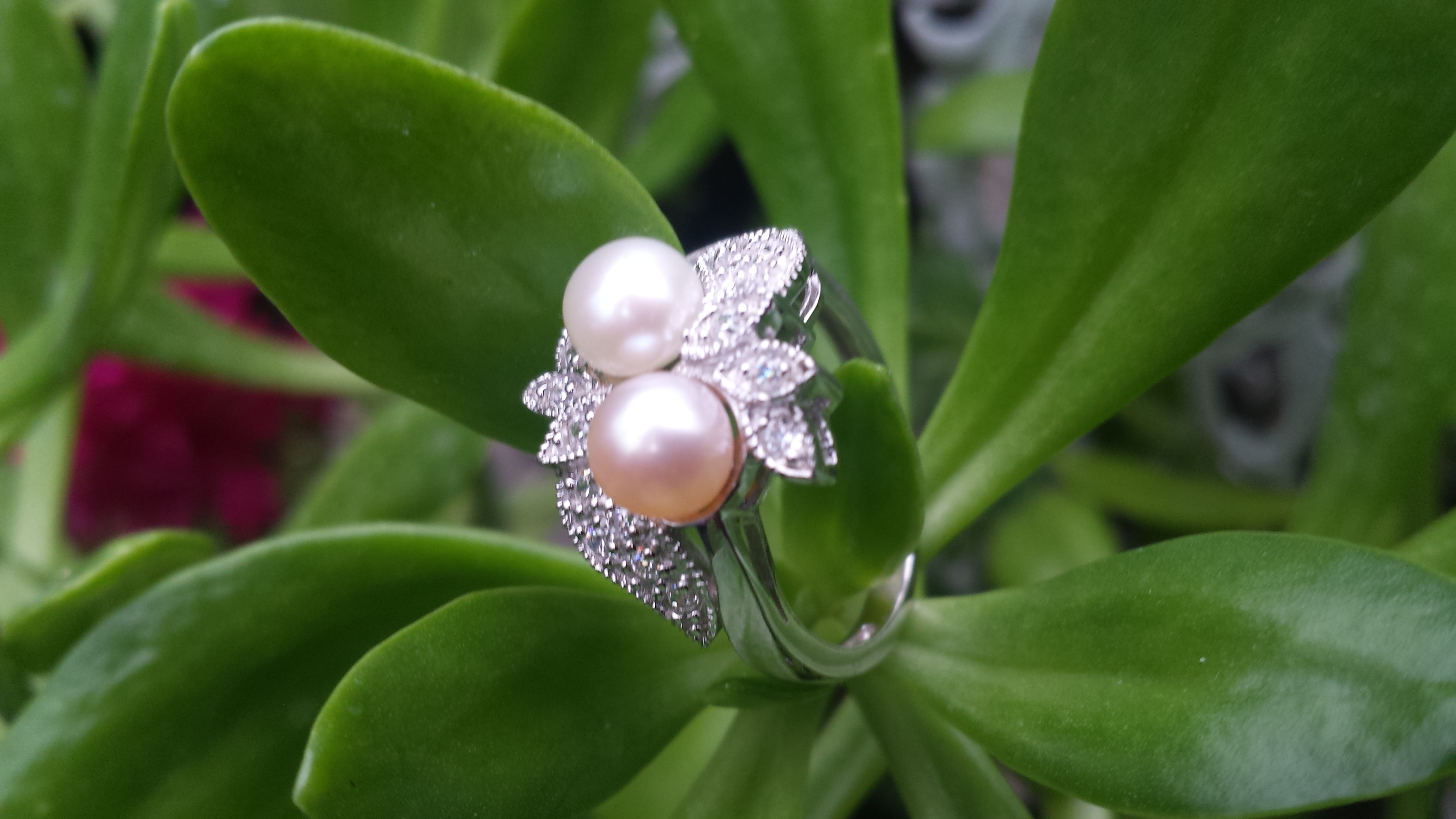 BEAUTIFUL DOUBLE WHITE/PINK FRESHWATER PEARL RING EMBEDDED CUBIC